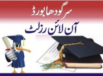 BISE Sargodha Board Matric Result 2013