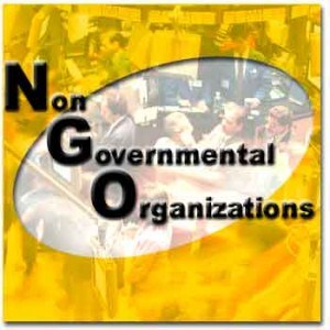 Role Of NGO's In Pakistan Development