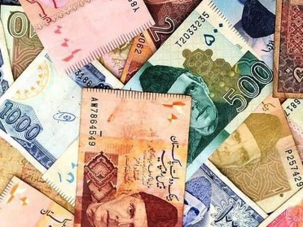 Economic Issues of Pakistan 001