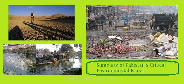 environmental development in pakistan essay Environmental research publishes original reports describing studies of the adverse effects of environmental agents on humans and animals the.