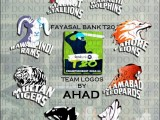 Faysal Bank T20 Cup Final Highlights 2012-2013