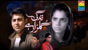Zindagi Gulzar Hai Drama on Hum Tv