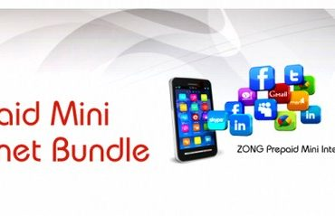 Zong Mini Internet Bundle 2013 For Daily Package