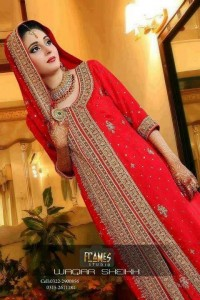 Pakistani Bridal Dresses 2013 latest Fashion trends