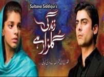 Zindagi_Gulzar_Hai_Drama_Hum_Tv