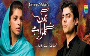 Zindagi Gulzar Hai Episode 10 Review By Hum TV