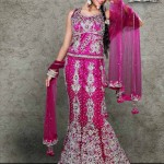 Latest Pakistani bridal lehenga designs 2013 bridal dress