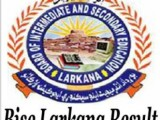 Bise Larkana board matric result 2013 10th class result