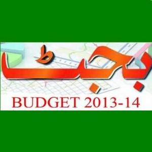 Punjab education budget 2013- 2014