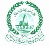 Bise Sahiwal board matric result 2013