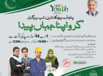 Youth Internship Program