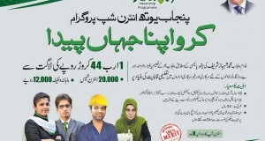 Punjab Youth Internship Program 2014 Apply Online
