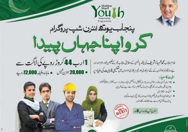 Shahbaz Sharif Youth Internship Program 2014 Apply Online, Registration
