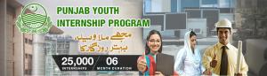 Punjab Youth Internship Program 2018 Apply Online