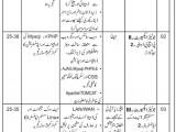 NAB Jobs 2014 Application Form Junior Expert in National Accountability Bureau Islamabad