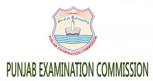 PEC 5th Class Old Papers 2014 2013 2012 Past English Medium
