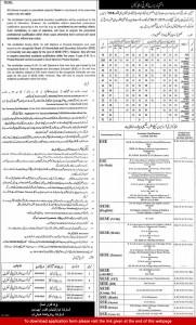 Educators Jobs in District Layyah Lodhran 2015 Application Form Last Date