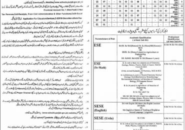 Educators Jobs in District Layyah Lodhran 2015 Application Form Last Date