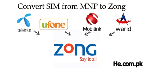 how to convert sim to zong