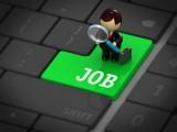 DHA Jobs