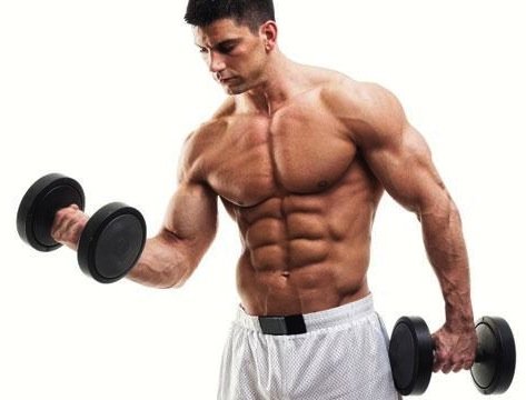 lack of body fat body building exercises burn the body fat this