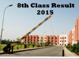 Bise Faisalabad 8th Class Result 2015 fsd Board Free Download Online