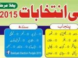 Baldiyati Election Results Punjab 2015 Party Position PMLN PTI Seats